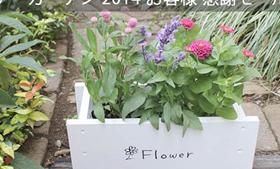 園芸品ショッピングサイト